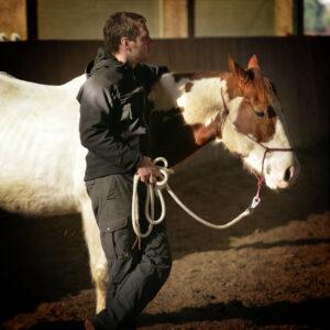 Vertrauen : Während des Führungskräftetraining herrscht ein entspanntes Miteinander zwischen Mensch und Pferd